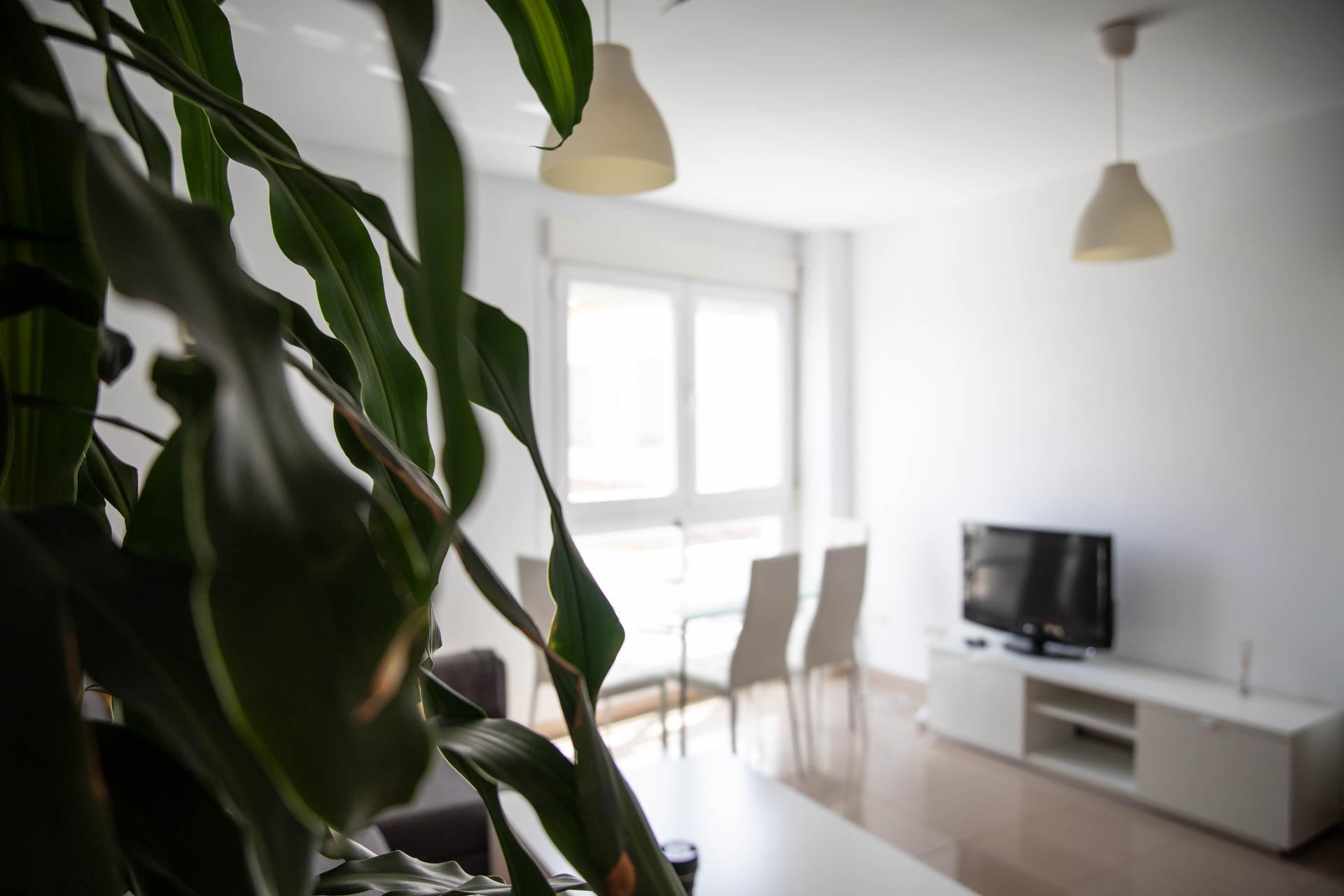 apartamento-clavel-salon
