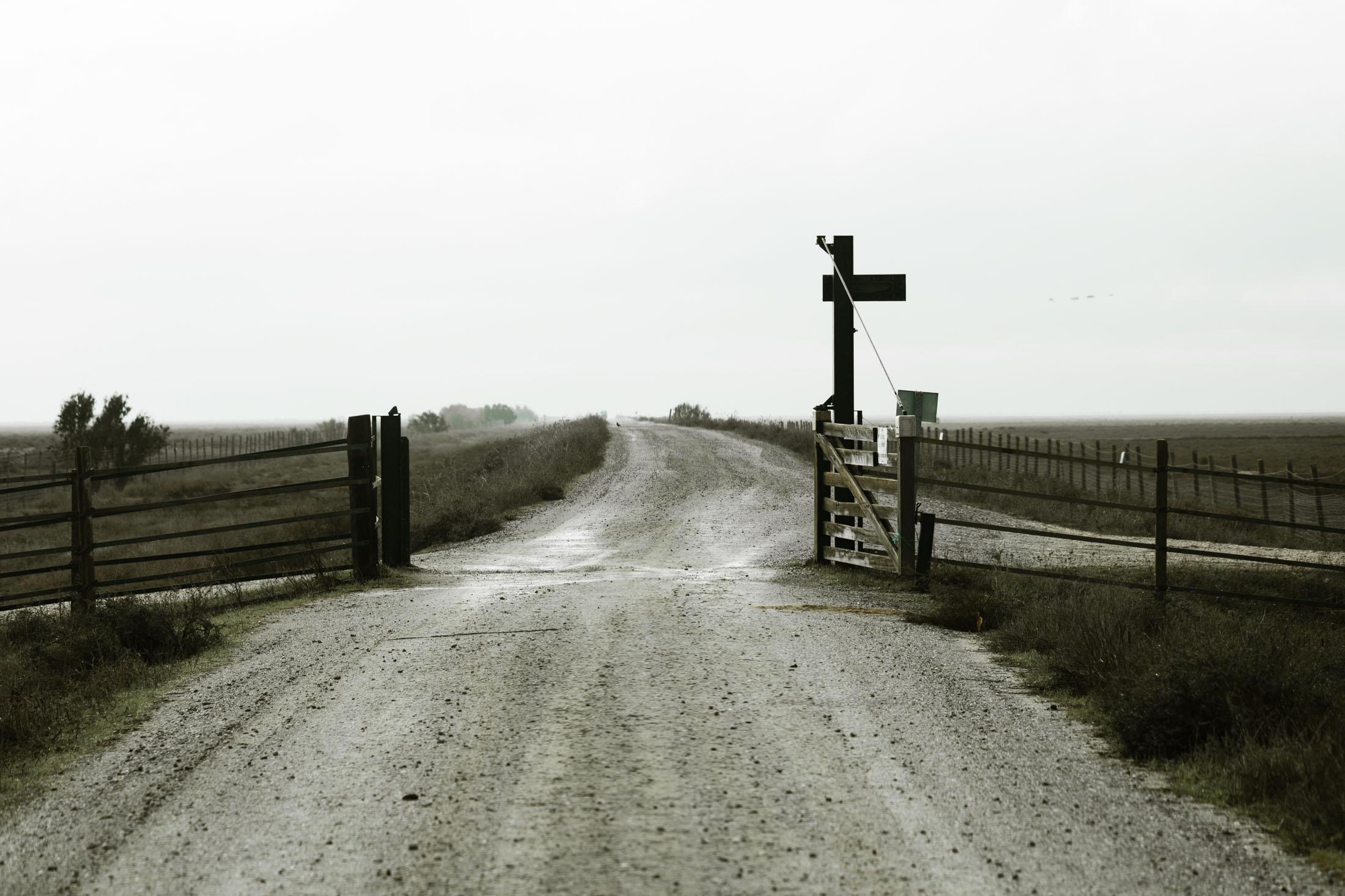 Carretera del Parque Nacional de Doñana