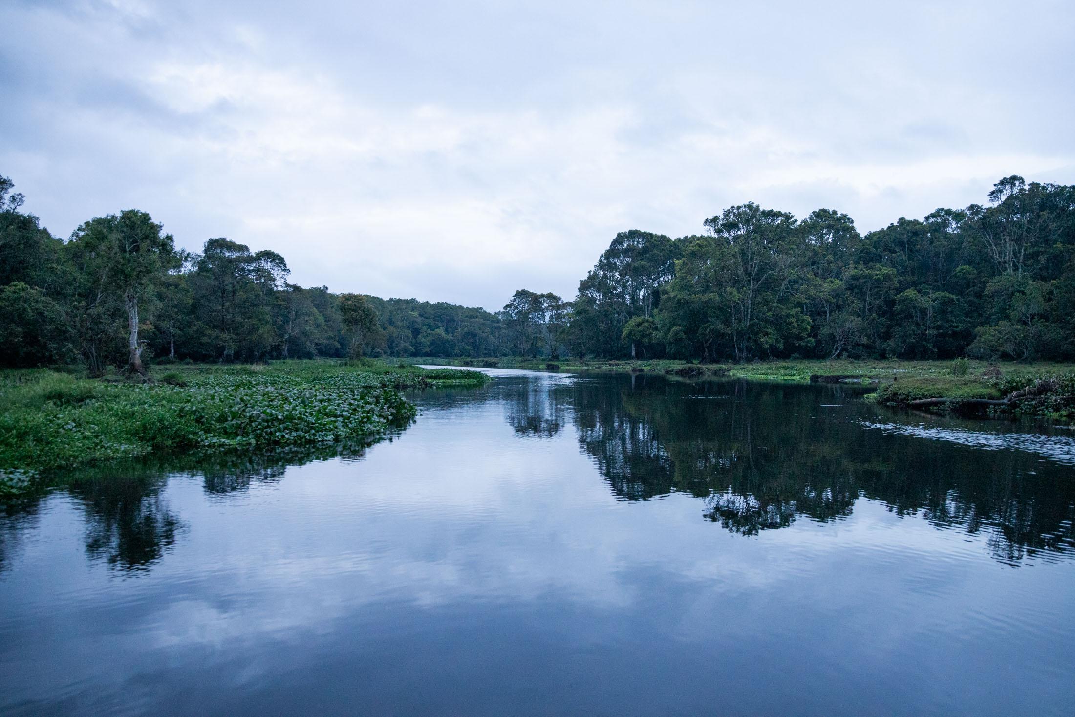 sumatra-selva-lago