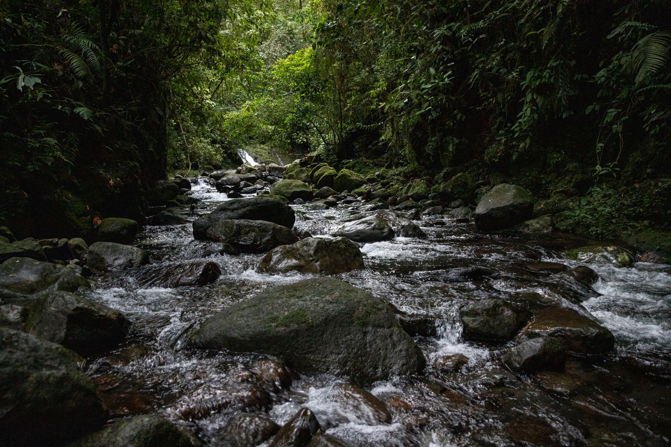 sumatra-rio