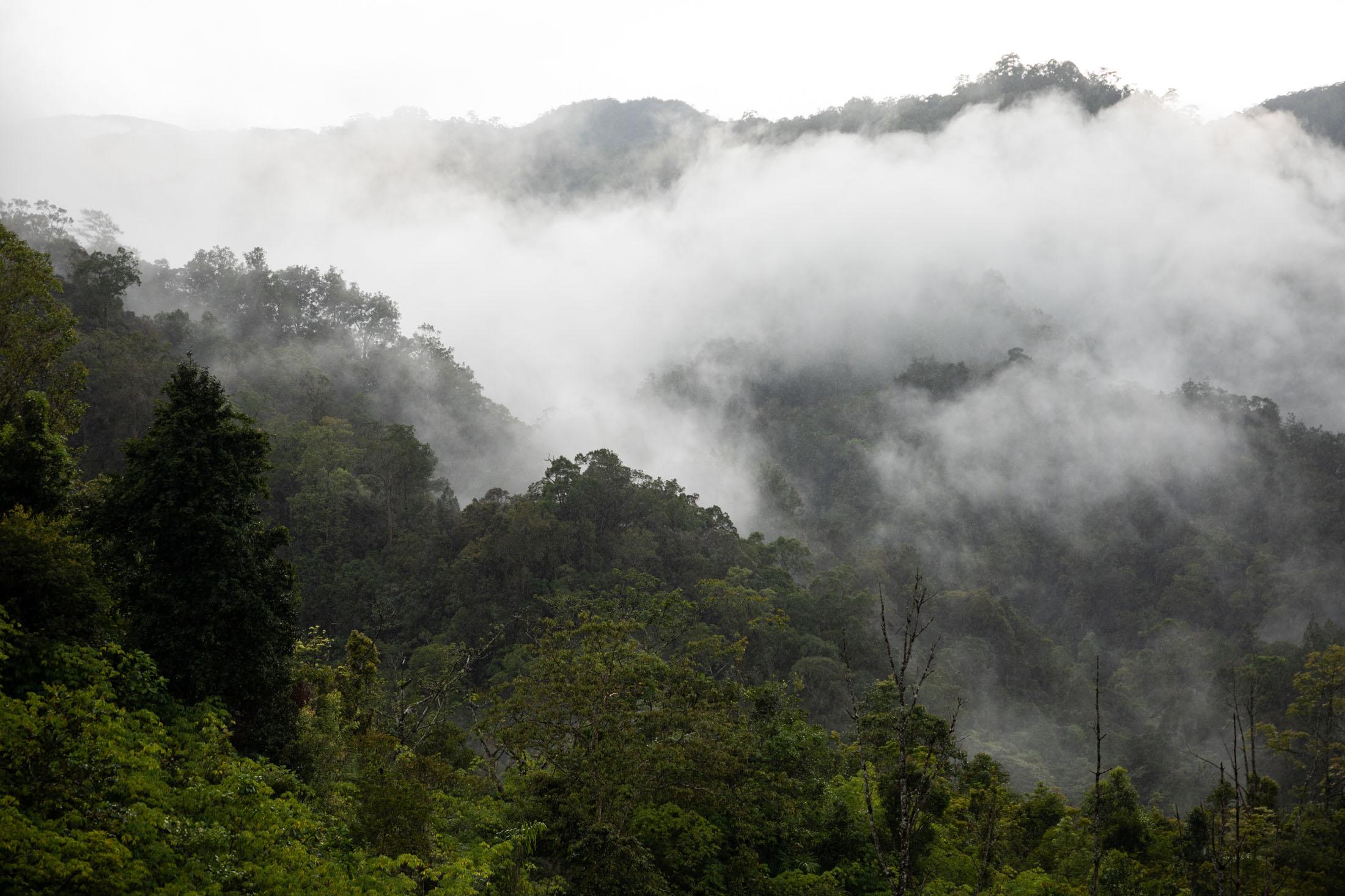 sumatra-montaña